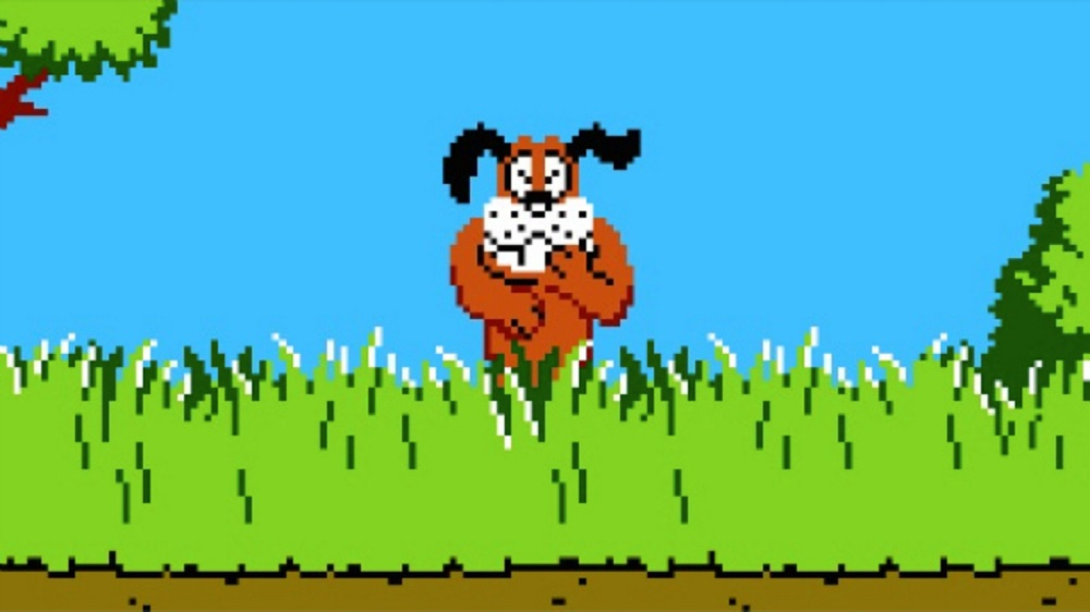 Duck Hunt Hype